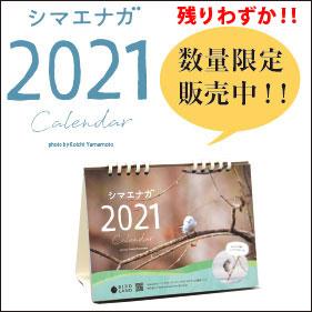 シマエナガ卓上カレンダー販売ページ